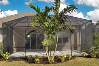 Adonidia Palm in front of a pool cage at a home in Palmetto, FL.