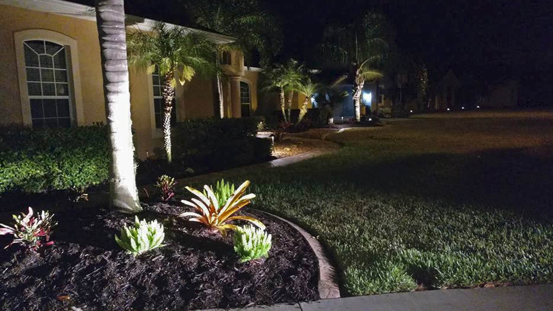 Custom landscape lighting for customer in Palmetto, FL.