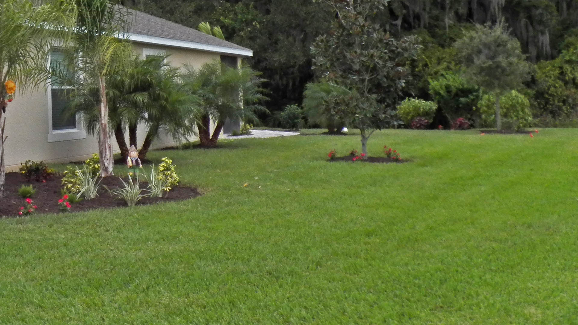 Professionally maintained lawn in Palmetto, FL.