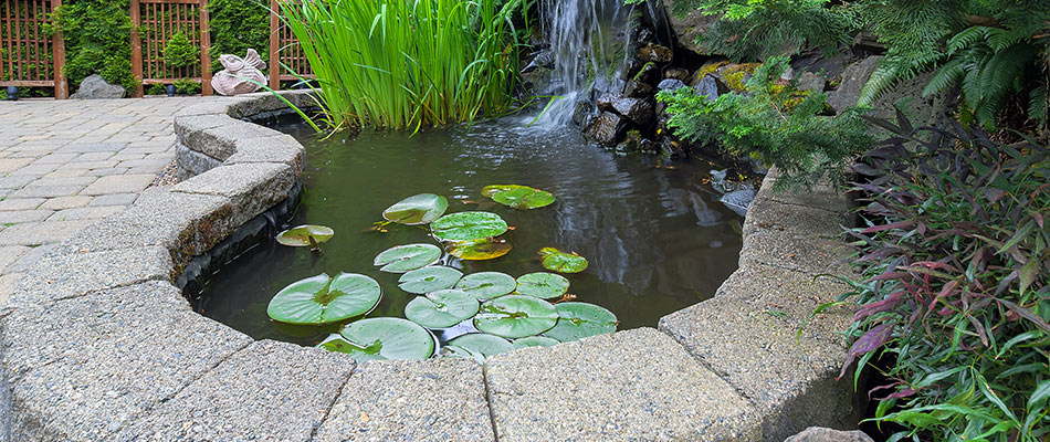 Benefits of Adding Water Features to Your Yard