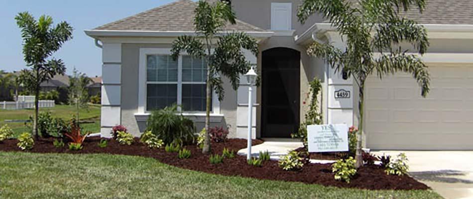 Plants That Thrive In The Florida Heat Three Seasons Blog