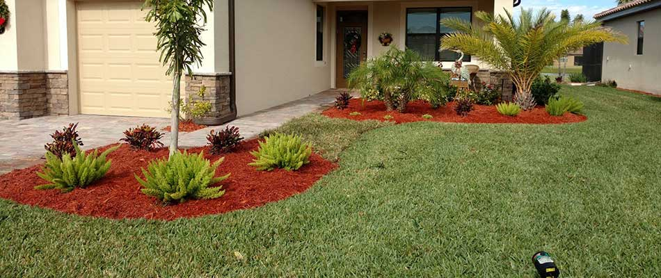 Well maintained lawn and landscape at a Sarasota, FL home.