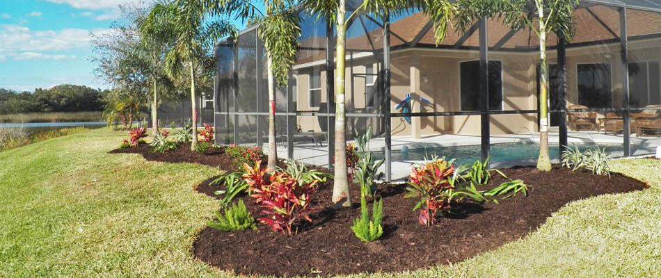 Landscape bed with nursery plants at a home in Parrish, FL.
