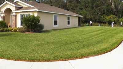 Nicely Mowed and Maintained Lawn in Palmetto, FL