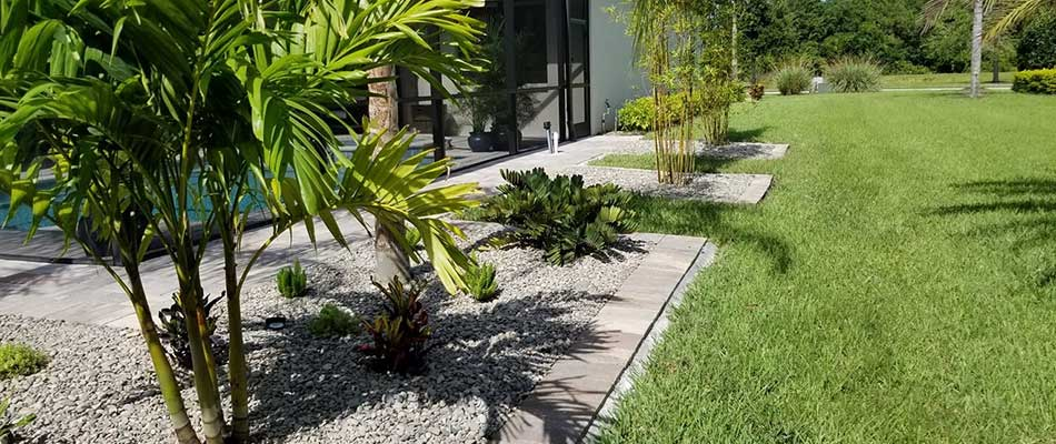 Custom landscape bed with tropical plants in Bradenton, FL.