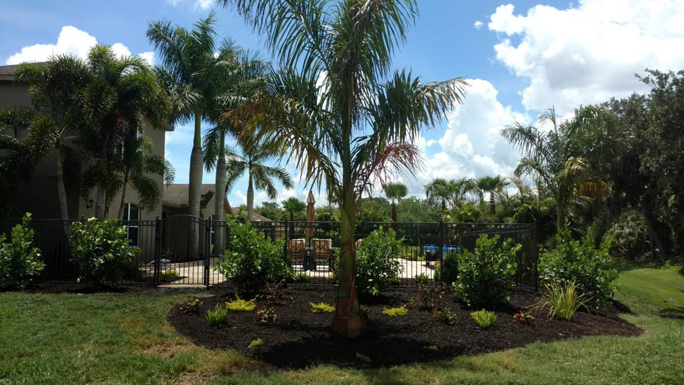 Creating a private tropical outdoor living space for Palmetto, FL homeowner.